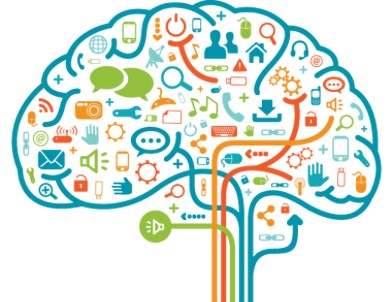 brain marketing psychology