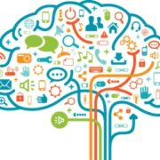 cerveau marketing psychologie